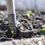 April Is National Safe Digging Month: Springtime Safety Tips